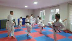 Sağlıklı Yaşam ve Spor Atölyesi kapsamında karate eğitimi devam ediyor.
