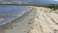 Bandırma Körfezi'nde müsilaj etkisi sürüyor