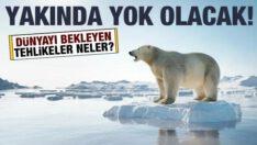 Arktik deniz buzu yakın bir zamanda yok olacak: İşte Dünya'yı bekleyen tehlikeler