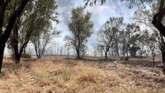 Dursunbey'de Köylülerin duyarlığı büyük yangını önledi