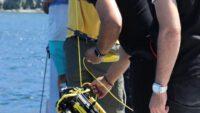 Denizin altında hayalet ağ ve müsilajın etkileri incelendi.