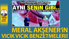 Meral Akşener'in vıcık vıcık benzetmeleri!